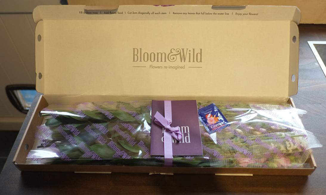 Bloom-Wild-Flowers-2