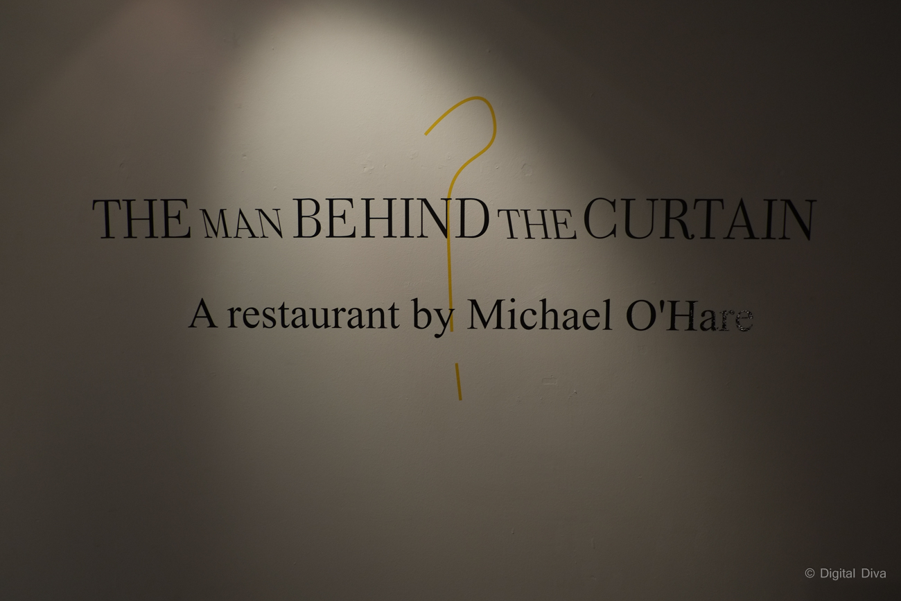 Man Behind The Curtain by Michael O'Hare