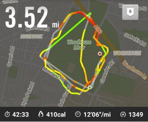 Nike+ Running Circuit of Park Run
