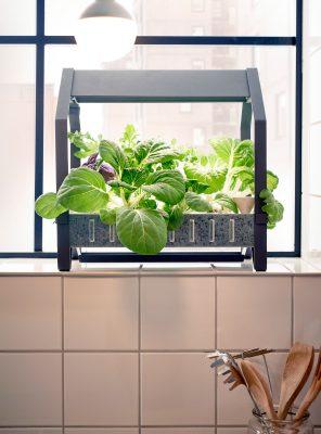 Indoor gardening with Ikea