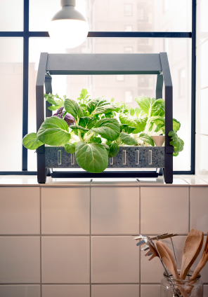 Indoor gardening with Ikea