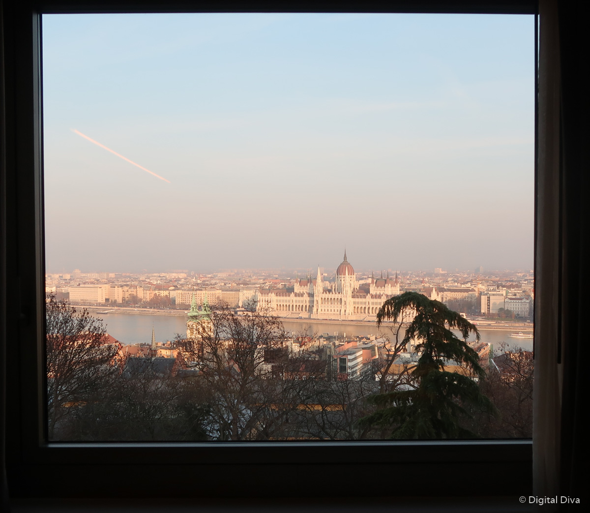 The Room's View